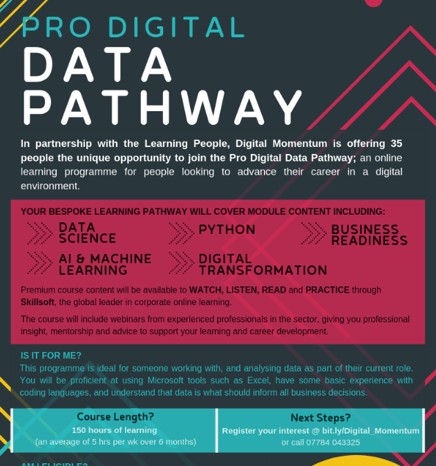 Pro Digital Data Pathway